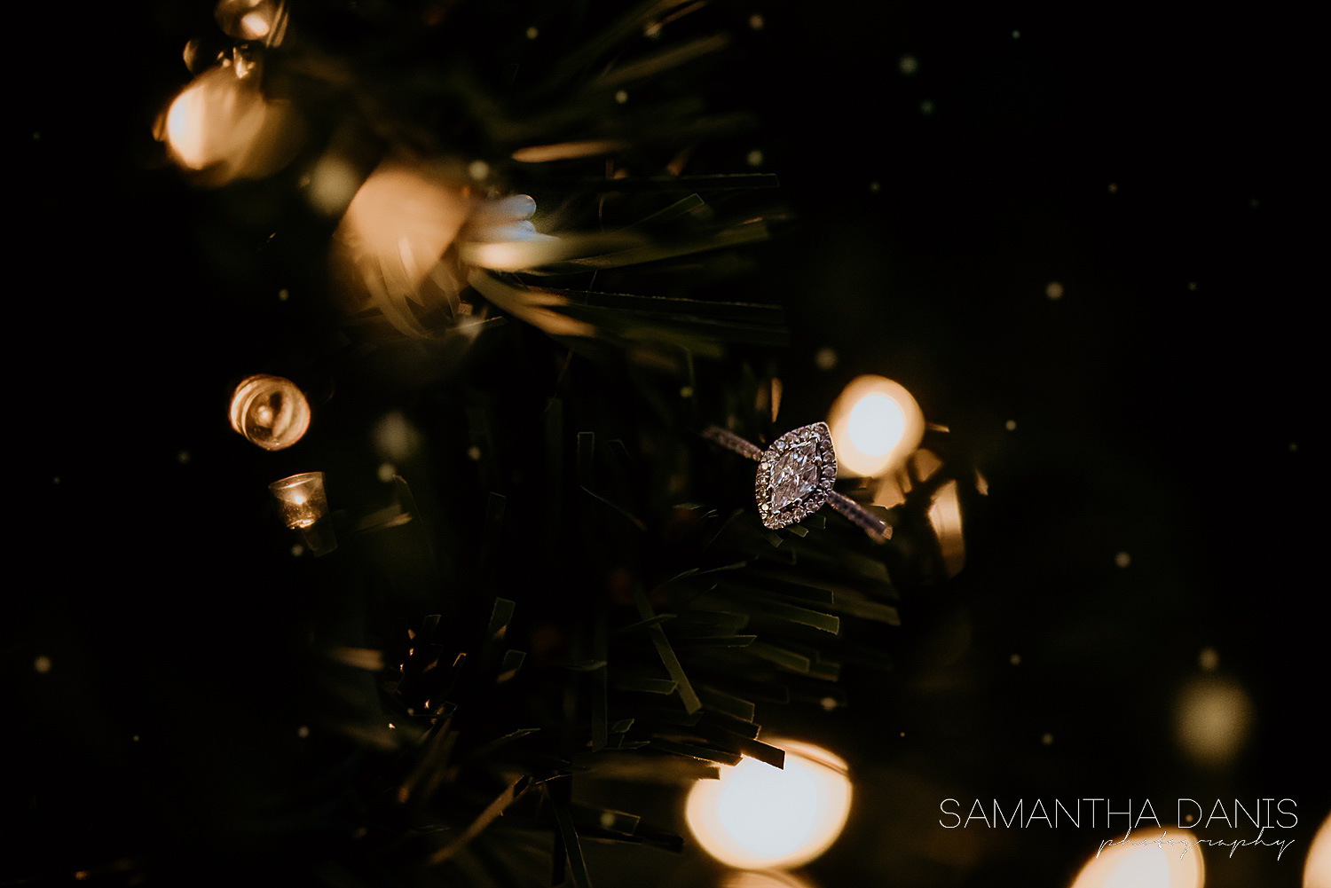 Beautiful marquis engagement ring set into the pine needles of a christmas tree at Lansdowne Park. Small twinkle lights create a beautiful bokeh effect mixed with the falling snow creating a beautiful dreamy romantic feel.